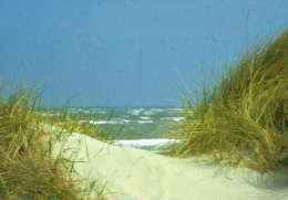 Wie entstehen Wellen?
