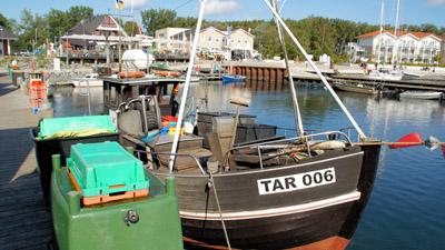 Fischerboote im Hafen Weiße Wiek