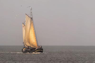 Plattbodenschiff im Wattenmeer