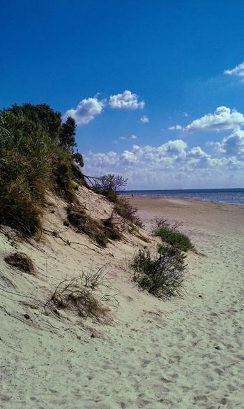 Ostende der Insel Langeoog