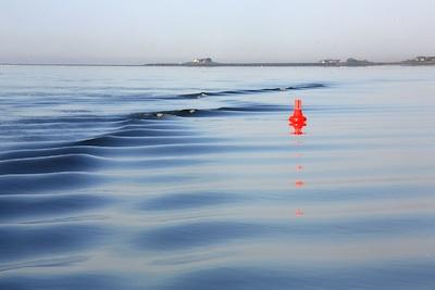 Morgens früh im Wattenmeer