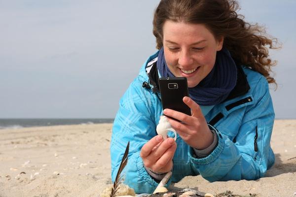 Goldene Palme für den BeachExplorer