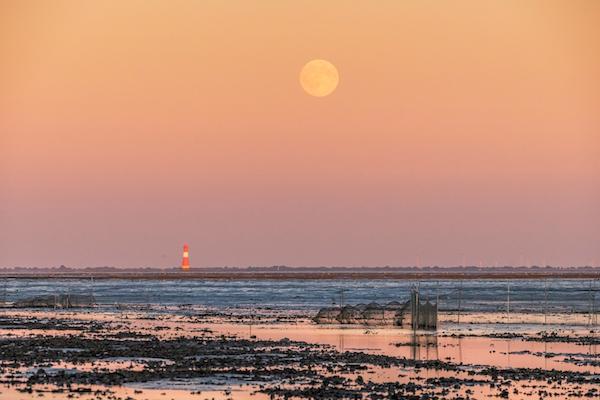 Die Nordsee für Nachtschwärmer