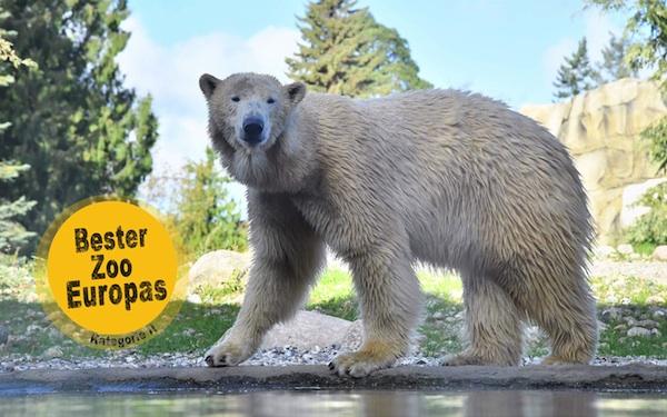 Bester Tierpark Europas